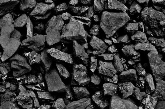 Pukemaori and Otautau Coal
